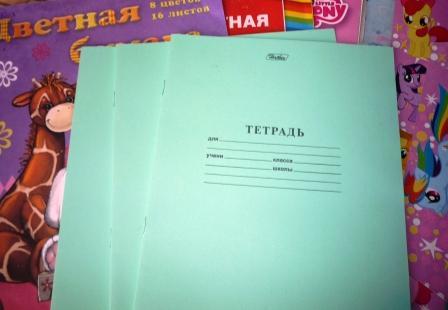 Родители магаданских школьников не обязаны самостоятельно приобретать детям рабочие тетради по предметам
