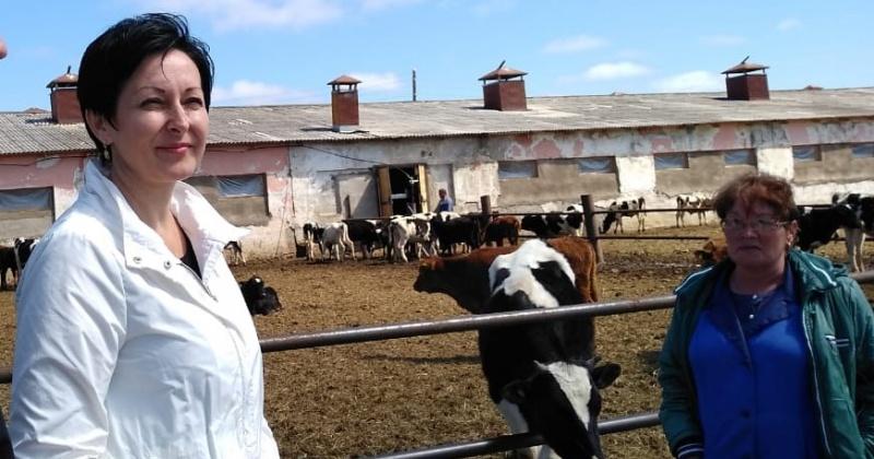 Оксана Бондарь адресовала Минсельхозу РФ запрос на увеличение поддержки колымских фермеров и возобновление возмещение части затрат на создание теплиц
