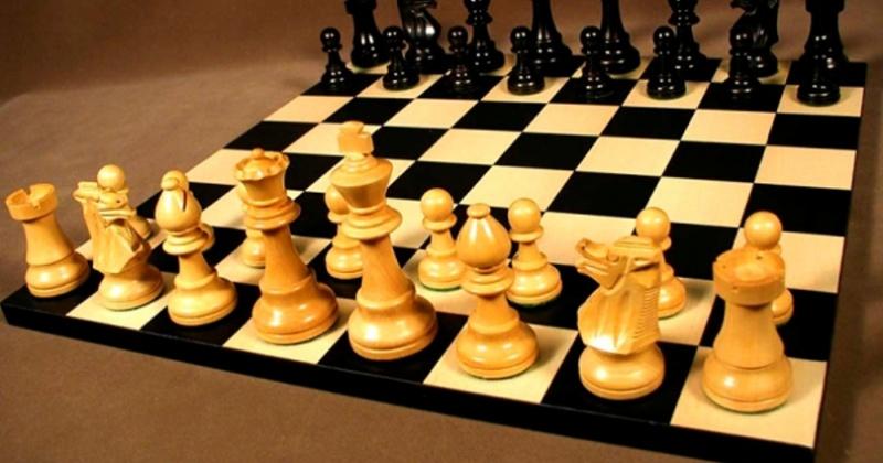 Партпроекты развивают шахматное движение в Магадане