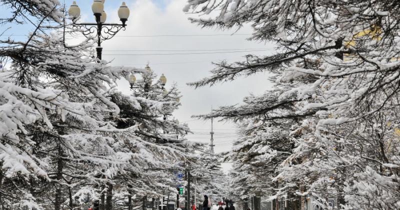 Положительные отклонения от температурной нормы прогнозируются в Магадане