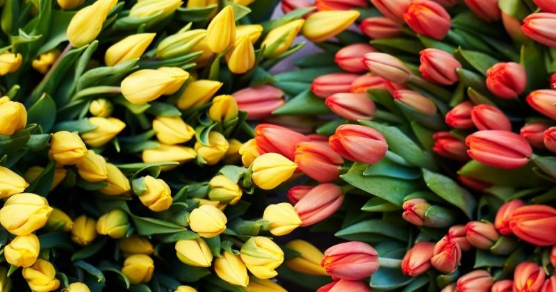 Предприниматель оштрафован за ввоз в Магадан   тюльпанов и хризантем