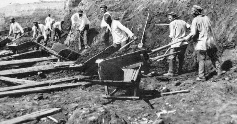 В Магадане в качестве противоцинготного средства приказали употреблять настой кедрового стланика 85 лет назад