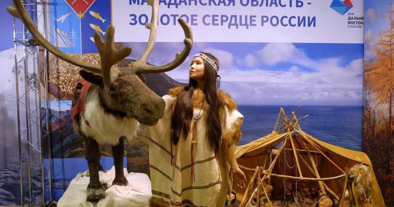 Колыма встречает гостей на Дальневосточной ярмарке в Москве