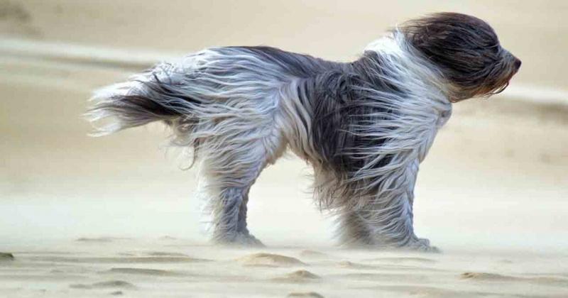 Ветер до 21 м/с ожидается завтра в Магадане