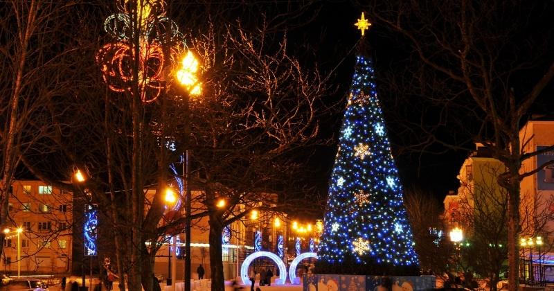 Зажжение елки на Магаданской площади, новогодний турнир по дзюдо и Тест по истории Отечества