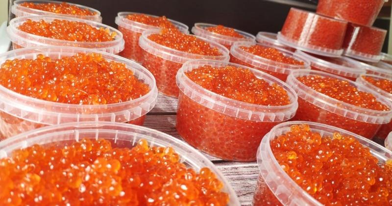 За неделю через аэропорт Магадан на материк вывезено почти восемь тонн красной икры