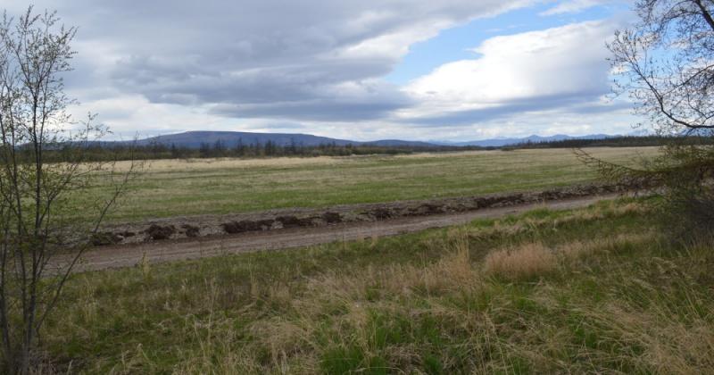 Колымчанин незаконно получил участок в особо охраняемой природной территории