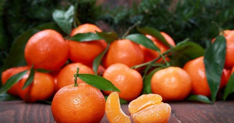 В Магадан запрещено ввозить цитрусовые из Китая