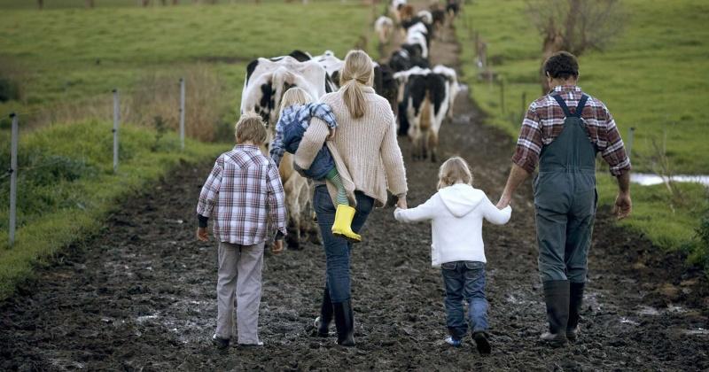 Лучшую семейную ферму выберут в Магадане