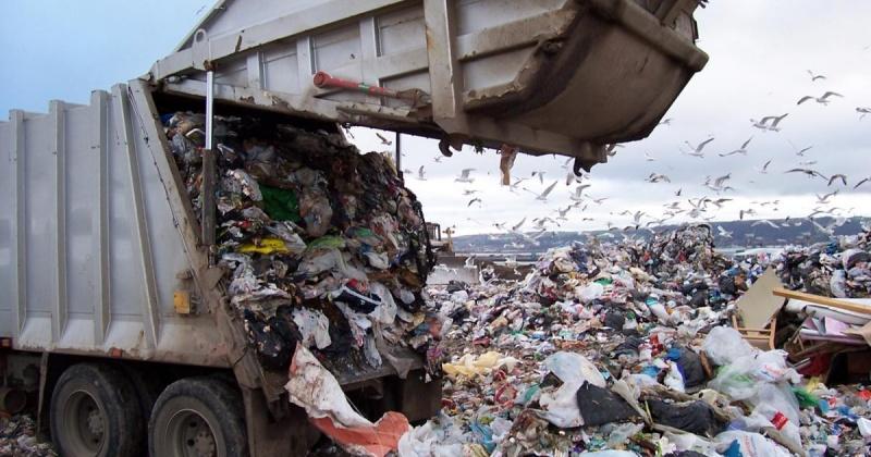 После вмешательства прокуратуры регоператор начал вывозить мусор