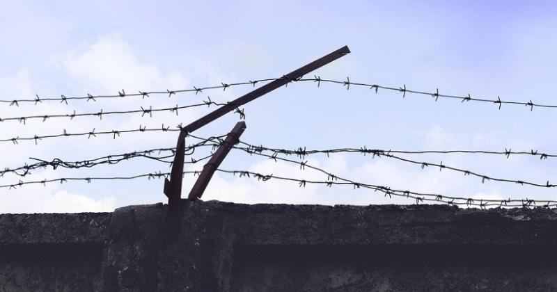В России проведут амнистию в связи с 75-летием Победы