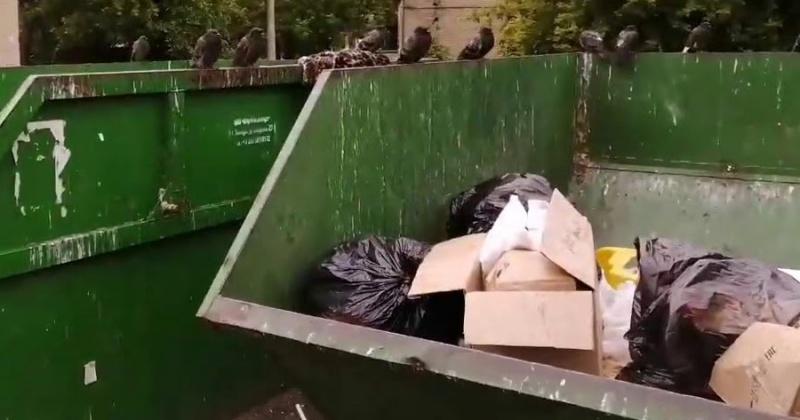 УФАС взялся за раздутый мусорный тариф в Магадане