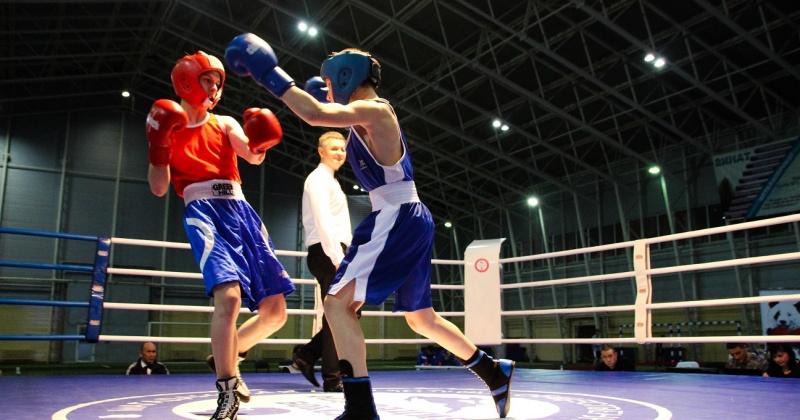 Боксерский турнир имени Якова Высоцкого пройдет в пос.Ягодное