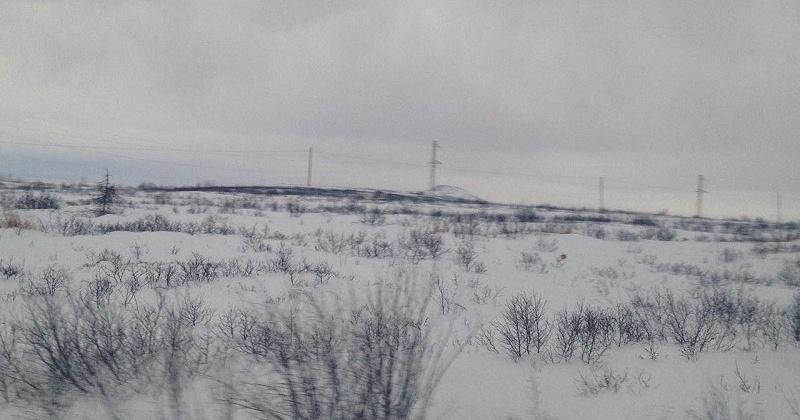 На восточном побережье Магаданской области ожидается сильный снег с ветром
