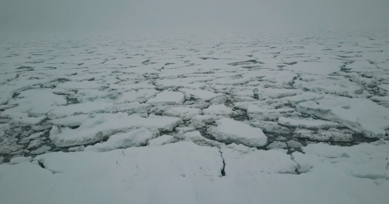 Выезд автотранспорта и выход людей на лед бухты Гертнера опасен