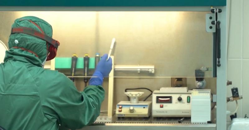 У жительницы Магадана подтвердился предварительный диагноз коронавируса. Это первый случай. (Видео)