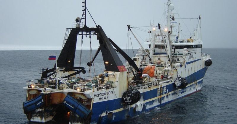 Колымские рыбаки добыли за 3 месяца 2020 года более 20 тысяч тонн рыбы