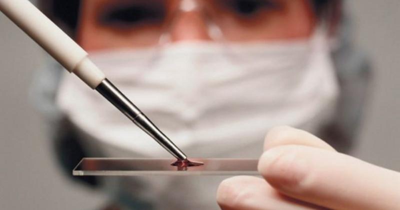 Четыре новых случая коронавируса зарегистрировано за сутки в Магадане и регионе