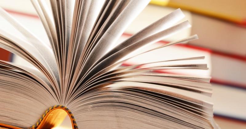 В Магаданской области свой профессиональный праздник отметили более 300 работников библиотек