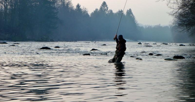 Вылов лосося для рыбаков - любителей в Магадане могут увеличить