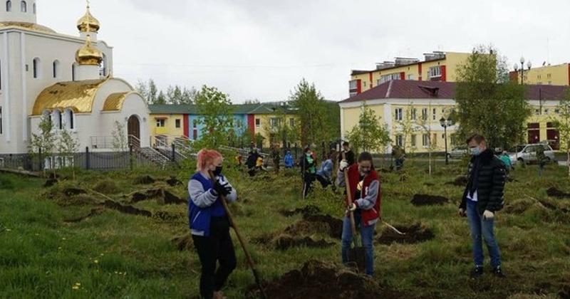 Молодогвардейцы Хасынского отделения стали участниками Международной акции «Сад памяти»