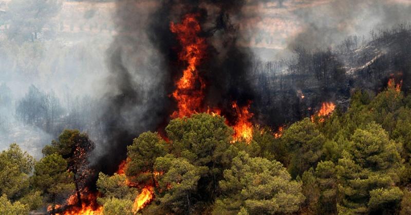 В шести городских округах Магаданской области действует особый противопожарный режим