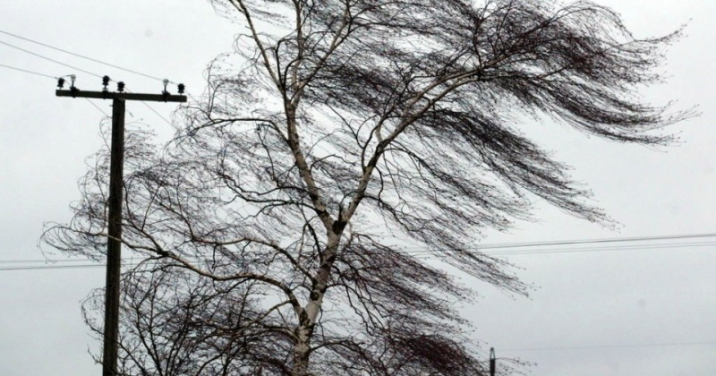 Сильный ветер ожидается в районах Колымы