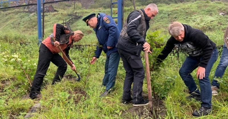 Байкеры мотоклуба «Ночные Волки» в рамках акции «Русский лес» высадили саженцы в Магадане