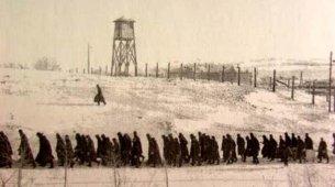 Место Дальстроя в становлении репрессивной системе тоталитаризма 1931-1940 гг.