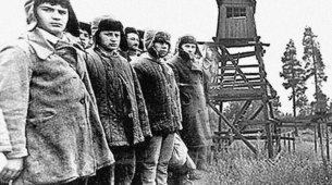 Репрессии: как это было. Кого карал НКВД