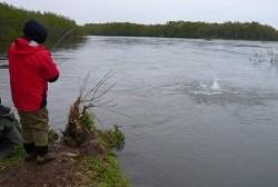 В Магаданской области пришло время гольцов