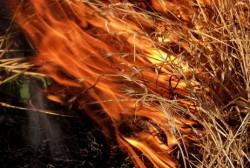 В Управлении юстиции накануне пожароопасного сезона проверили региональное законодательство Колымы и Чукотки