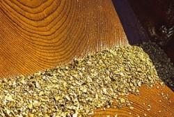 Соревнования по промывке золота пройдут в Магадане 18 июля в рамках Золотого фестиваля