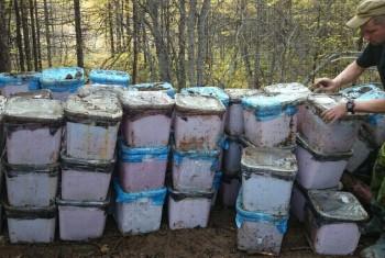 В Магаданской области у браконьеров изъято 48 кубоконтейнеров красной икры
