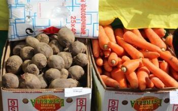 Производство картофеля и овощей на Колыме по сравнению с 2014 годом выросло на 50%.