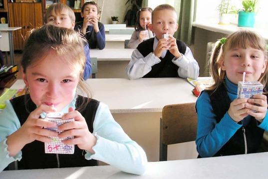 В Магадане возобновят муниципальную программу «Школьное молоко»