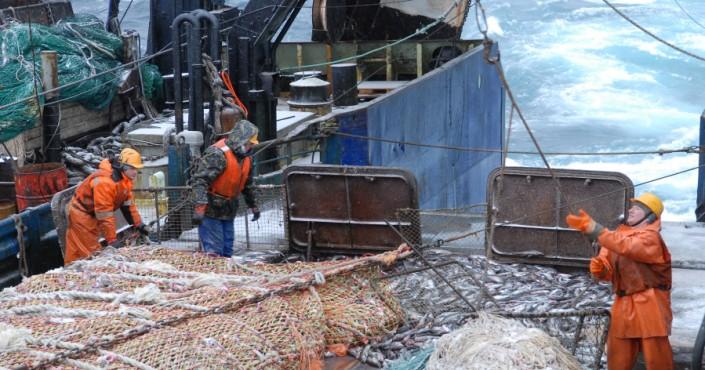 Льды не помешали минтайщикам Колымы успешно начать год