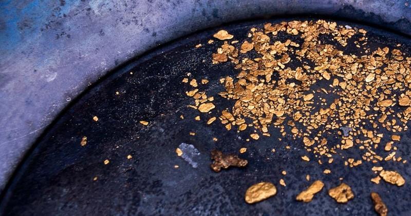 Ученик ювелира подозревается в краже почти шестисот граммов самородного золота