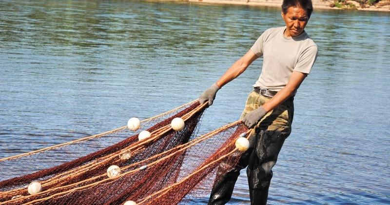 В Охотском теруправлении принимают заявки КМНС на рыбалку будущего года