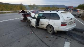 На магаданской автодороге в дорожно-транспортном происшествии погибли два пешехода