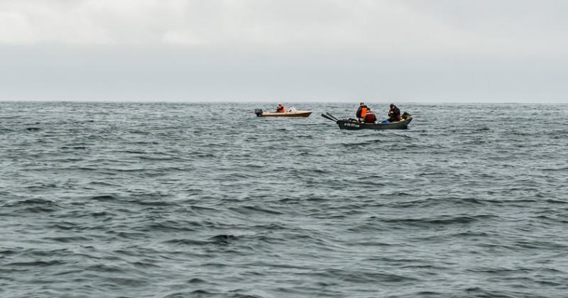 Гражданами, терпящими бедствие в Охотском море, являются сотрудники полиции