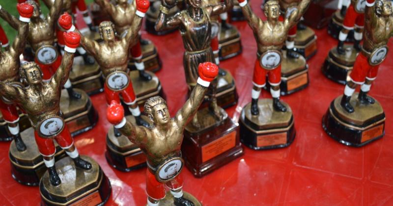 За четыре дня соревнований зрители могли увидеть 116 боксерских  боев