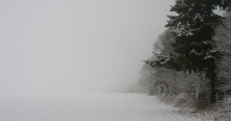 Завтра в районах Магаданской области ожидается ветер, сильный снег, метель
