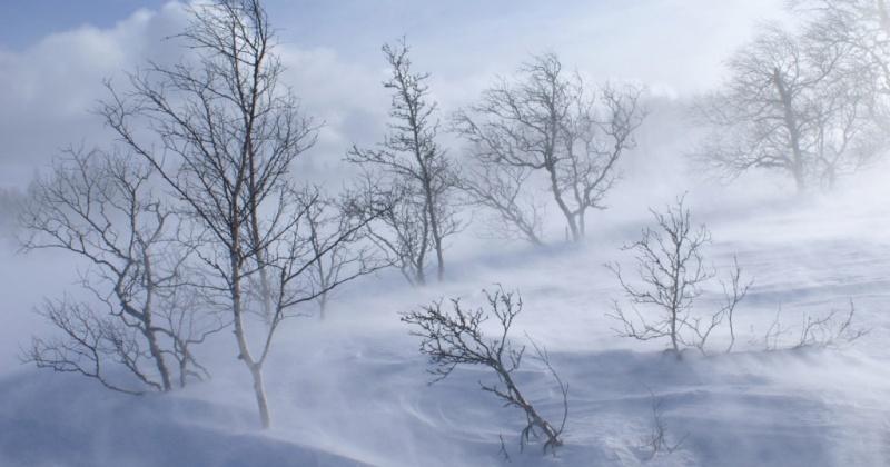 На восточном побережье Охотского моря Магаданской области ожидается ветер, сильный снег, метель