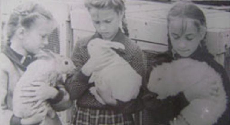 62 года назад на базе кружков юных кролико-, голубе-, цвето- и овощеводов Дома пионеров в Магадане была создана Областная станция юных натуралистов