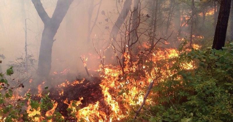 Высокая пожарная опасность сохраняется в районах Магаданской области