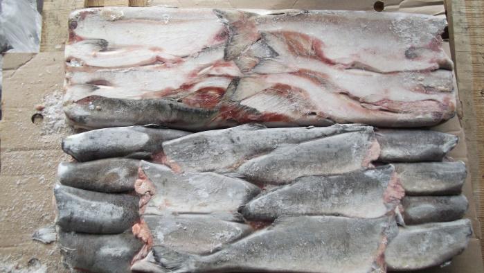 Магаданская область начала поставки рыбы для свердловских предпринимателей