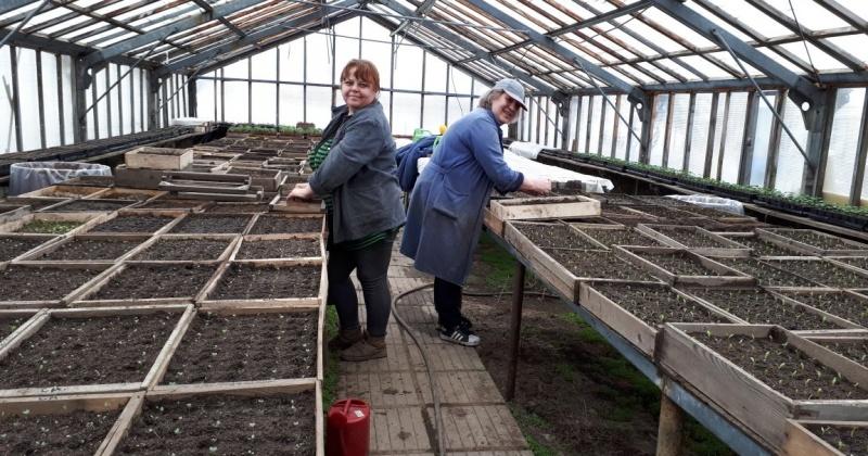 Готовь сани летом, а телегу зимой: в КЗХ организуют работу по посеву рассады