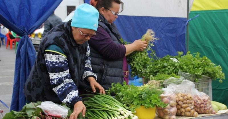 Продукцию местного производства без наценки жители Колымы могут приобрести на ярмарке выходного дня