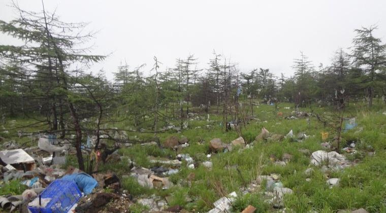 В Магаданской области выявлено загрязнение тяжелыми металлами земельного участка сельскохозяйственного назначения